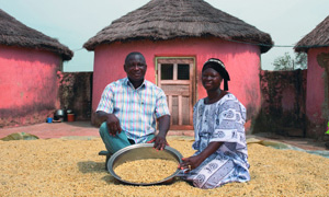 Farmers in West Africa