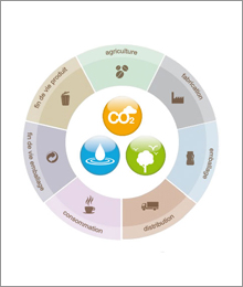 Nescafé life cycle assessment graphic